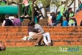Parque_2013_Luzazul